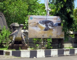 Turtle Conservation and Education Centre.